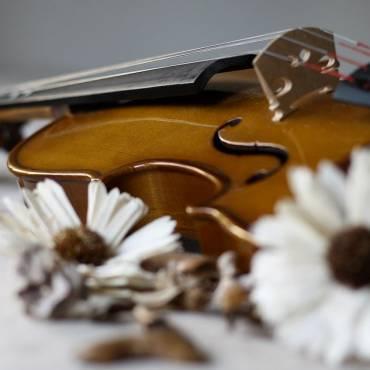 Spring Concert   String Groups – April 26